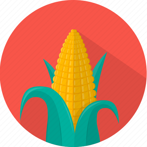 corn, food, healthy, kitchen, meal, plant, vegetable icon