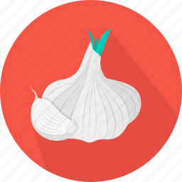 cooking, food, garlic, kitchen, meal, plant, vegetable icon
