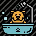 bath, beauty, pet, salon, shower icon