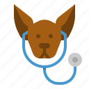 care, dog, medical, puppy, steptoscoop icon