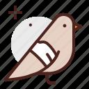 bird, pet, vet icon