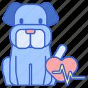 cardio, cardiology, dog, heart, heart condition, heart rate, heartbeat