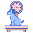 dog weight, scale, weigh, weighing, weight icon