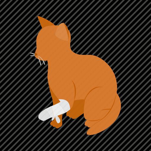 animal, blog, broken, cat, isometric, paw, pet icon