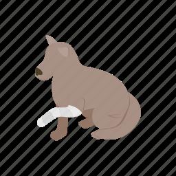 animal, blog, broken, dog, isometric, paw, pet icon