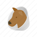 animal, blog, brace, dog, health, isometric, neck icon