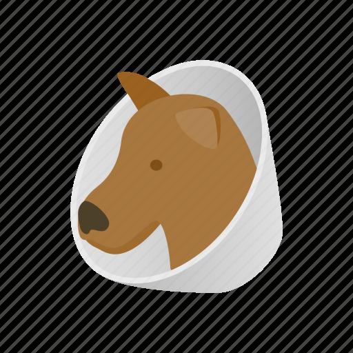 animal, blog, brace, dog, health, isometric, neck icon