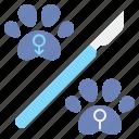 castrate, neuter, spay, sterilization icon