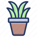 botanical plant, plant, plant growth, plant pot, seeding icon
