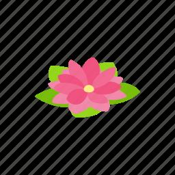 floral, flower, isometric, lotus, nature, petal, plant icon