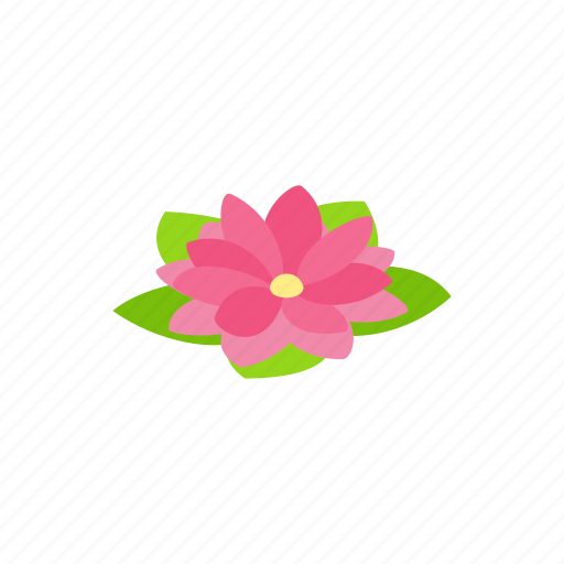 Floral, flower, isometric, lotus, nature, petal, plant icon - Download on Iconfinder