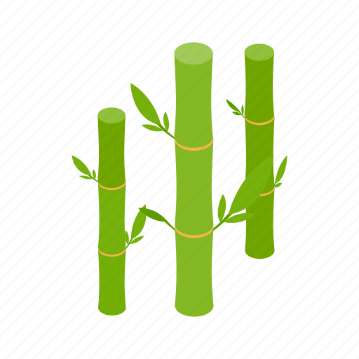 Bamboo, decoration, isometric, leaf, nature, plant, tree icon - Download on Iconfinder