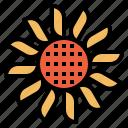 flower, sun icon