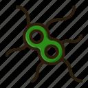 bacteria, disease, healthcare, medical, microbe, virus