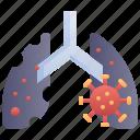 coronavirus, covid, infected, lungs