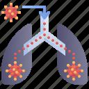 lungs, pneumonia, transmission, virus