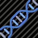 dna, genetics, genome