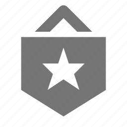 flag, star icon