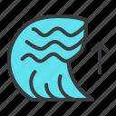 calamity, disaster, natural, ocean, sea, tsunami, wave