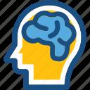 body organ, body part, brain, human brain, human organ