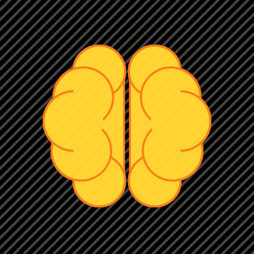 brain, idea, intelligence, think icon