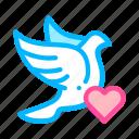 heart, pigeon, wedding