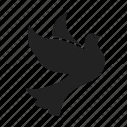 bird, birds, dove, doves, flight, fly, flying, peace icon