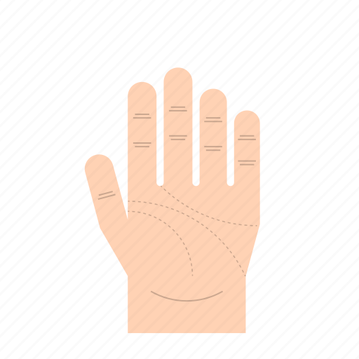 body language, fingers, gesture, hand, left hand, palm of hand, thumb icon