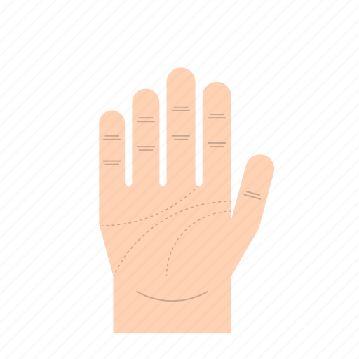 body language, fingers, gesture, hand, palm of hand, right hand, thumb icon