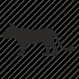 animal, cat, panther, wild icon