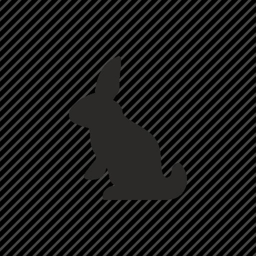 Animal, child, pet, rabbit icon - Download on Iconfinder