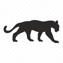 animal, cat, tiger, wild icon