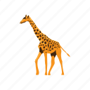 africa, animal, fauna, forest, jungle, wild, zoo icon