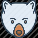 animal, bear, face, nature, panda, wildlife
