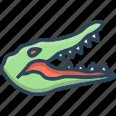 alligator, animal, cocodrilo, crocodile, reptile, wildlife