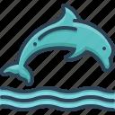 dolphin, fish, jumping, nature, ocean, sea, water