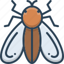 animal, bug, fly, insect, insects, mosquito, pest icon