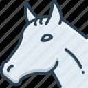animal, face, horse, pet