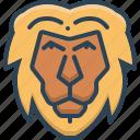 animal, face, lion, zoo