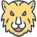 animal, face, tiger, wild, wildlife, zoo