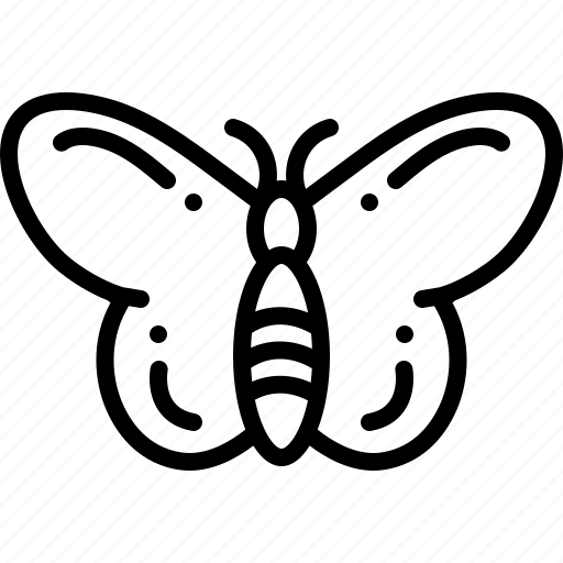 butterfly, dragonfly, freedom, light icon