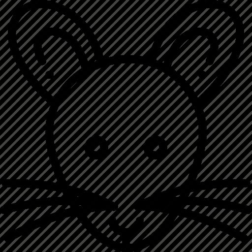 mouse, rat, raton icon