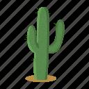 cactus, desert, nature, plant, thorn, west, wild icon