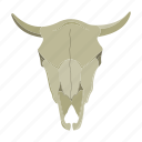 animal, buffalo, bull, head, horns, skull
