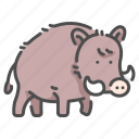 animal, boar, fur, safari, tusk, wildlife, zoo icon