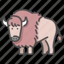 africa, animal, buffalo, horn, mammal, wildlife, wool icon