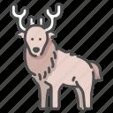 antler, christmas, deer, elegant, wildlife, zoo icon
