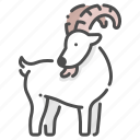 cute, goat, mammal, rural, wildlife, zoo icon