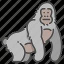 africa, animal, gorilla, mammal, monkey, safari, wildlife icon