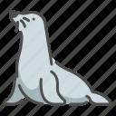 carnivore, sea, seal, wildlifemammal, zoo icon